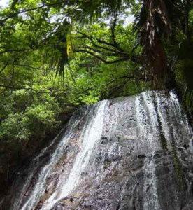 甑島観光 瀬尾観音三滝