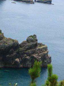 甑島観光 鳥ノ巣山展望台